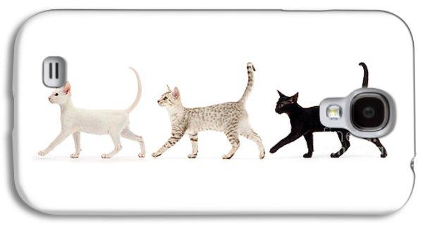 The Kits Parade - Three Galaxy S4 Case