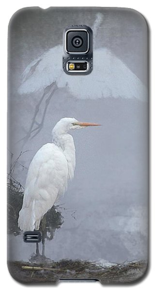 .  .  .  Into The Mist  .  .  . Galaxy S5 Case