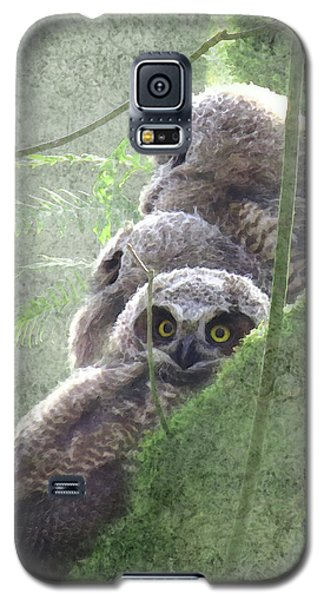 Harbingers Of Spring Galaxy S5 Case by I'ina Van Lawick