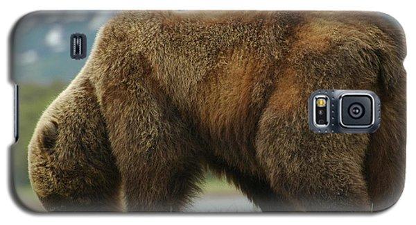 Alaska Grizzly Galaxy S5 Case