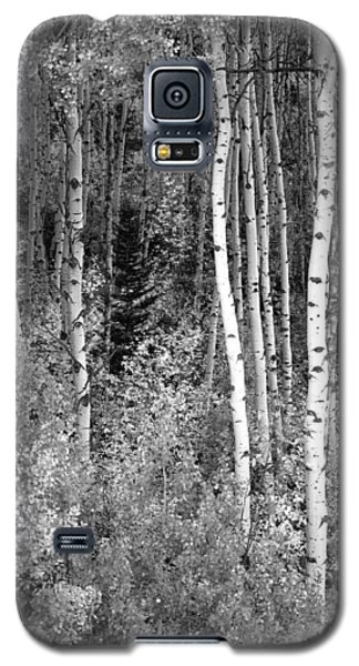 Galaxy S5 Case featuring the photograph  Aspen Autumn  by Eric Rundle