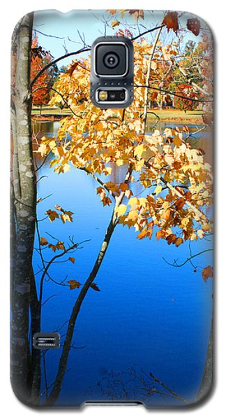 Autumn Trees On The Lake Galaxy S5 Case