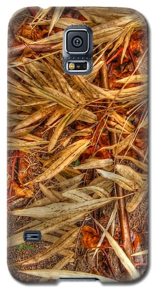 Bamboo Leaves Galaxy S5 Case by Michelle Meenawong