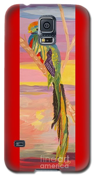 Beautiful Bird Quetzal Must Open  Galaxy S5 Case