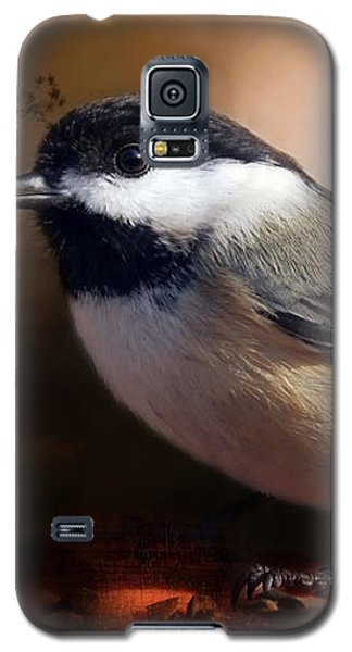 Black Capped Chickadee Galaxy S5 Case by Elaine Manley