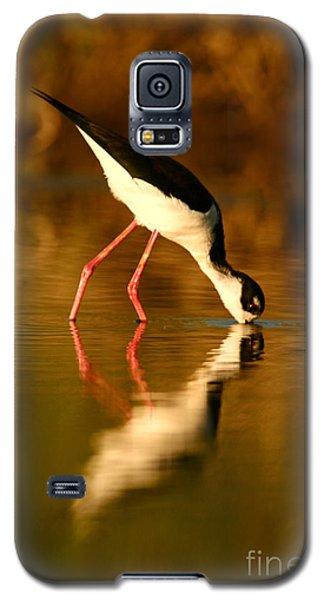 Galaxy S5 Case featuring the photograph  Black-necked Stilt Reflection by John F Tsumas