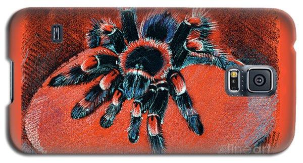 Brachypelma Smithi Redknee Tarantula  Galaxy S5 Case
