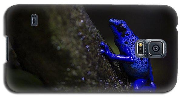 Brilliant Blue Galaxy S5 Case