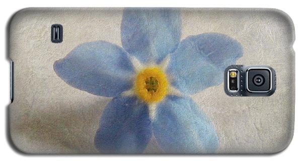 Myosotis 'forget-me-not'- Single Flower Galaxy S5 Case
