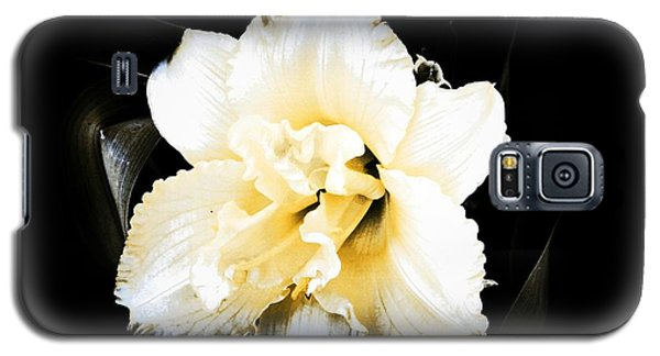Galaxy S5 Case featuring the photograph  Daylily by Michelle Frizzell-Thompson