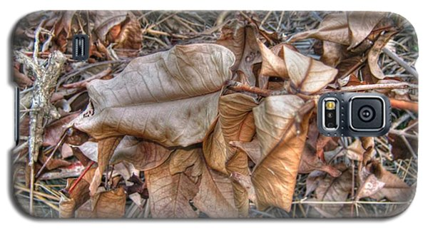 Galaxy S5 Case featuring the photograph  Dead Leaves by Michelle Meenawong