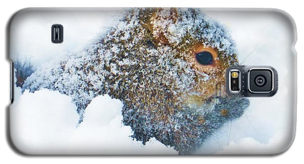 Deep Snow Squirrel Galaxy S5 Case