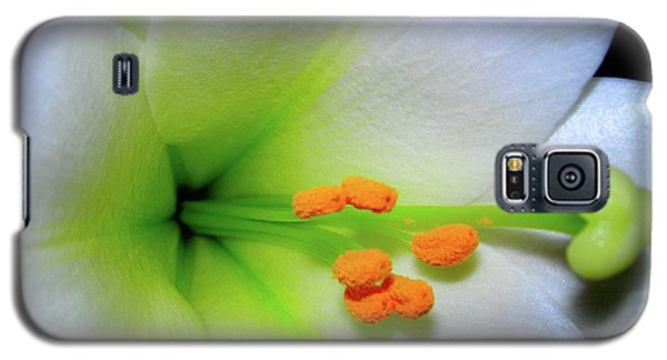 Galaxy S5 Case featuring the photograph   Easter A New Beginning  by Randy Rosenberger