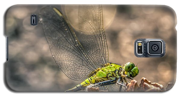 Erythemis Simplicicollis Galaxy S5 Case by Rob Sellers