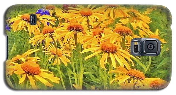 Field Of Fall Flowers Galaxy S5 Case