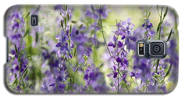 Fields Of Lavender  Galaxy S5 Case by Saija  Lehtonen