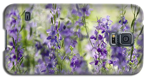 Fields Of Lavender  Galaxy S5 Case