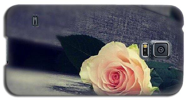 Decorative Galaxy S5 Case -  Gray In Romantik by Jacqueline Schreiber