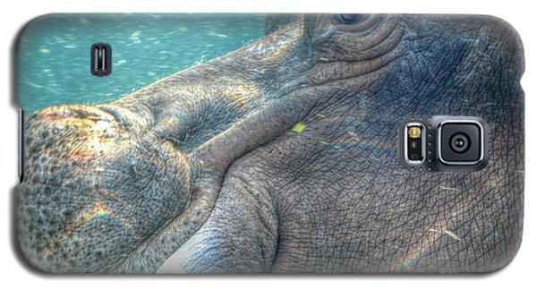 Hippopotamus Smiling Underwater  Galaxy S5 Case
