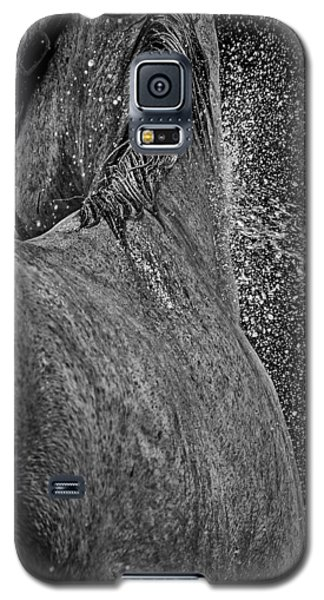 Horse Cool Off Galaxy S5 Case