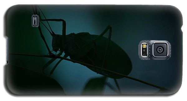 Galaxy S5 Case featuring the photograph  It's A Bug... by Tammy Schneider
