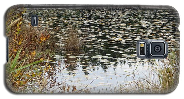 Lily Pads On Whonnock Lake Galaxy S5 Case