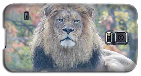Lion Ceo Galaxy S5 Case
