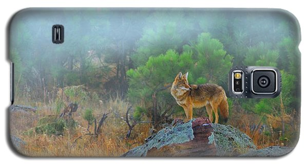 Galaxy S5 Case featuring the photograph '' Morning Patrol '' by Kadek Susanto