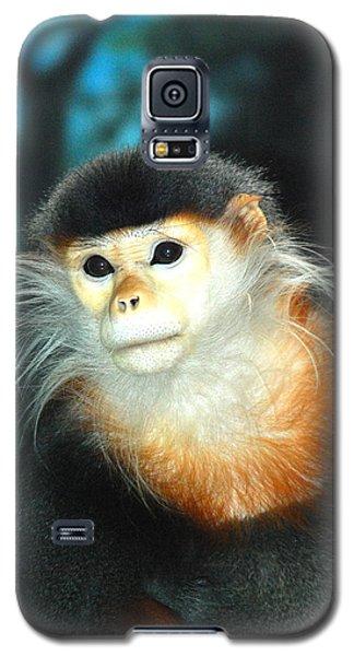 Mr. Handsome Galaxy S5 Case