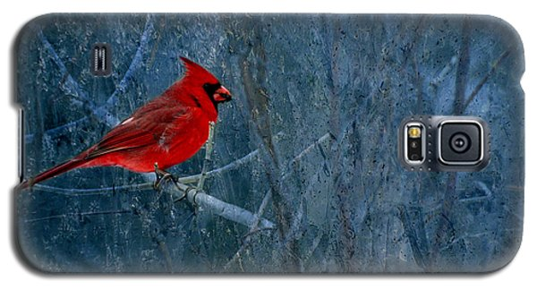 Northern Cardinal Galaxy S5 Case by Thomas Young