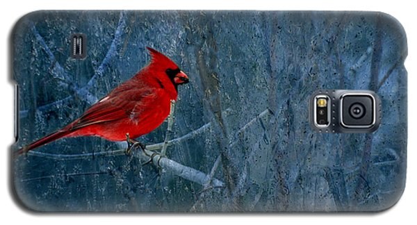 Northern Cardinal Galaxy S5 Case