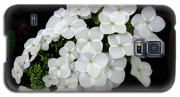Galaxy S5 Case featuring the photograph  Oak Leaf Hydrangea by William Tanneberger