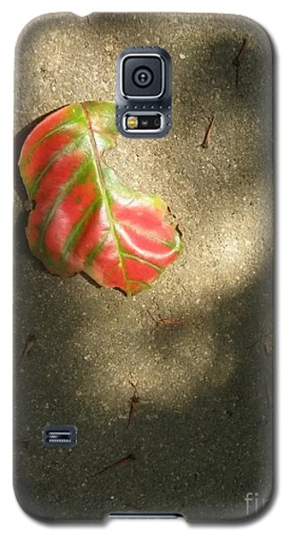Galaxy S5 Case featuring the photograph  Ombres by Michelle Meenawong