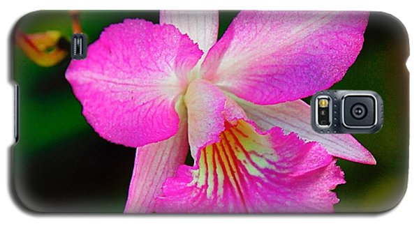 Orchid Flower Galaxy S5 Case
