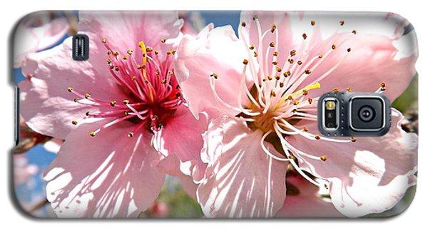 Peach Blossom Galaxy S5 Case