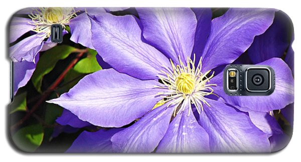Pretty Purple Clematis Galaxy S5 Case by Mindy Bench