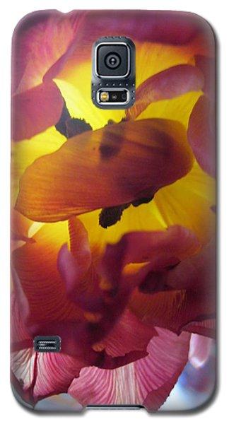 Rip Galaxy S5 Case