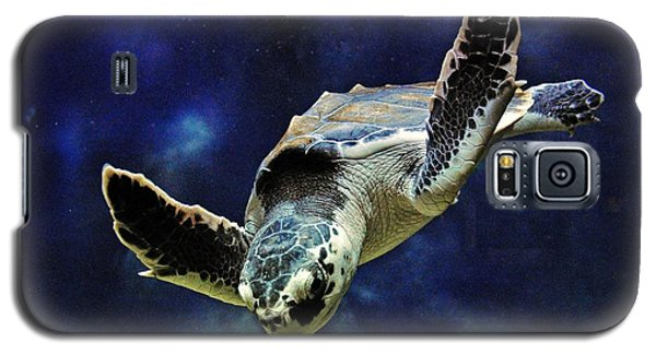 Galaxy S5 Case featuring the photograph  Sea Turtle by Savannah Gibbs