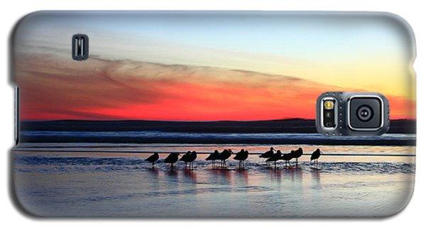 Shorebird Sunset Galaxy S5 Case