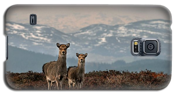 Sika Deer Galaxy S5 Case