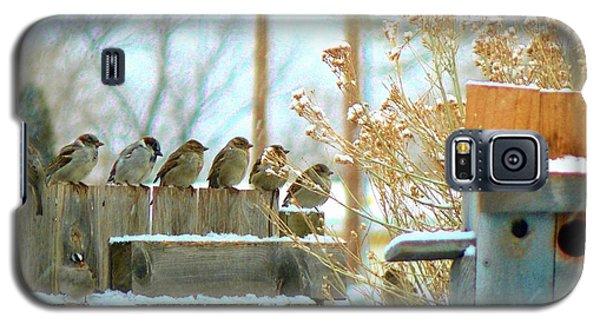 Galaxy S5 Case featuring the photograph 7 Winter Sparrows by Deborah Moen