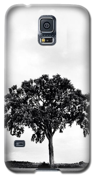 Cause Galaxy S5 Case -  The Tree Again by Kreddible Trout