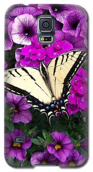 Tiger  Swallowtail Butterfly Galaxy S5 Case