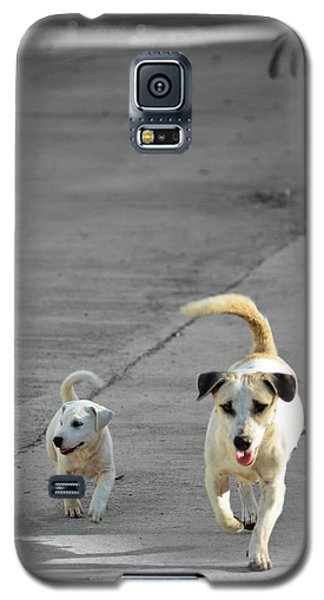 Two Of A Kind Galaxy S5 Case by Michelle Meenawong