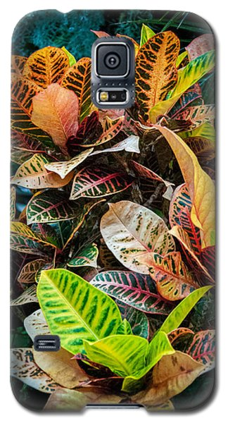 Variegated Plants Galaxy S5 Case