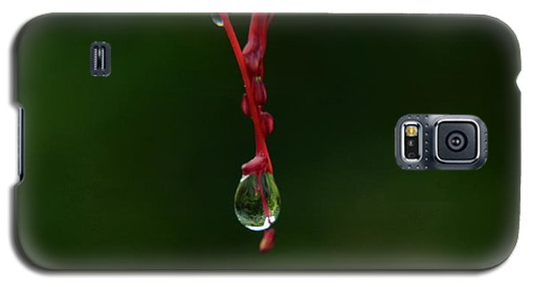 Waterdrop Galaxy S5 Case by Michelle Meenawong