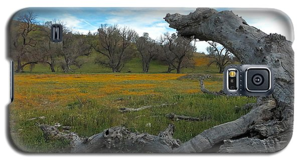 Wild Shell Creek Road Galaxy S5 Case by Paul Foutz