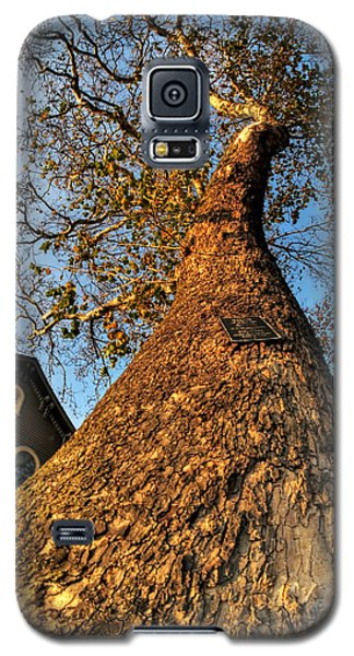 001 Oldest Tree Believed To Be Here In The Q.c. Series Galaxy S5 Case by Michael Frank Jr
