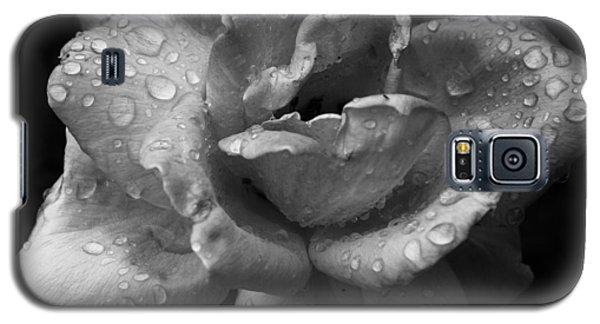 05 Wet Rose Galaxy S5 Case