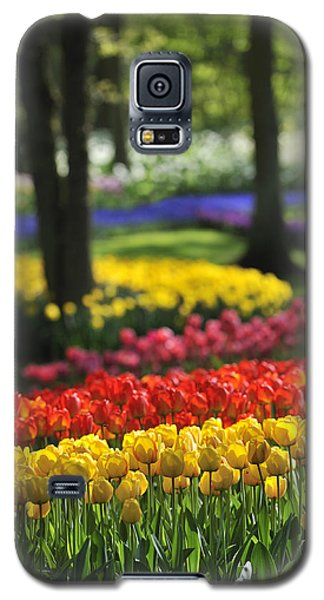 Galaxy S5 Case featuring the photograph 090811p124 by Arterra Picture Library